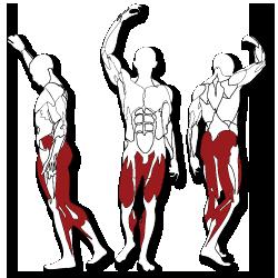 BH fitness Tr series láb edzés