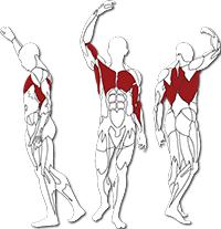 BH fitness Tr series váll edzés