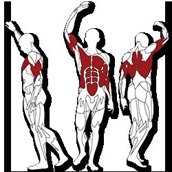 BH fitness Tr series tricepsz edzés